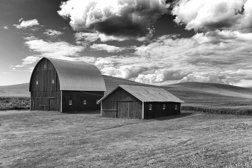 the rural landscape, through an urbanist lens